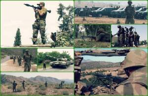 pakistan-launches-full-scale-military-operation-in-nwa-1402846797-1591