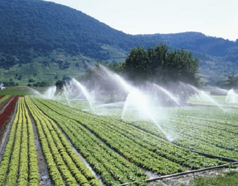 largest-irrigation-system-in-pakistan.jpg