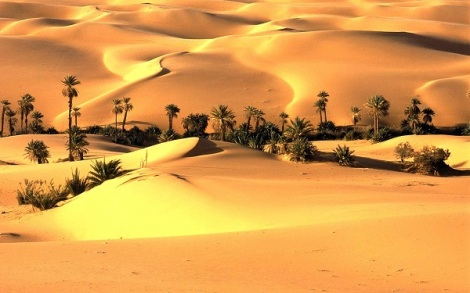 One-of-the-largest-deserts-in-Pakistan-thar.jpg